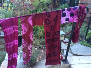 Cochineal dye day scarves and samples